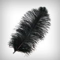 FEATHERBLK